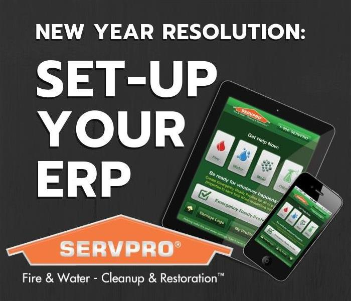 Commercial New Year Resolution: Set-Up Business ERP
